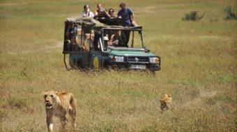 Viaje a Kenia, Tanzania y Zanzíbar. Memorias de África experience en camión. Especial Fin de Año