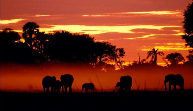 Viaje de Ciencia y Aventura en Tanzania