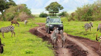Viaje a Tanzania. En familia. Tanzania, fauna y etnias