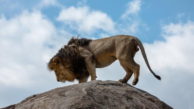 Viaje a Tanzania - Safari de aventura corazón Masai