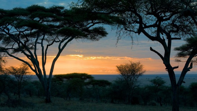 Viaje a Tanzania - Safari Sendas Africanas