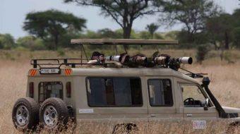 Cómo prepararse para un Safari por Tanzania