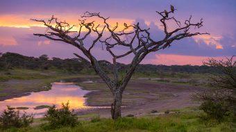 Lugares de Interés en Tanzania