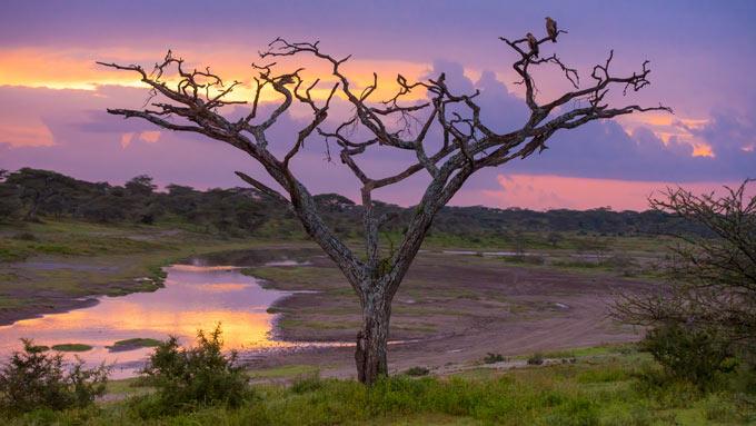 Viajes a Tanzania - Parques y Lagos del Norte