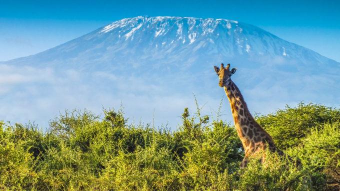 Viajar a Tanzania en Navidad